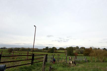 Kinderboerderij Beverhof - Boerderijdieren